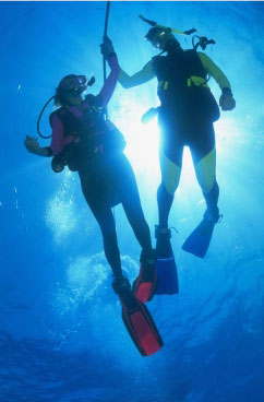 Дворец водных видов спорта - Дайвинг
