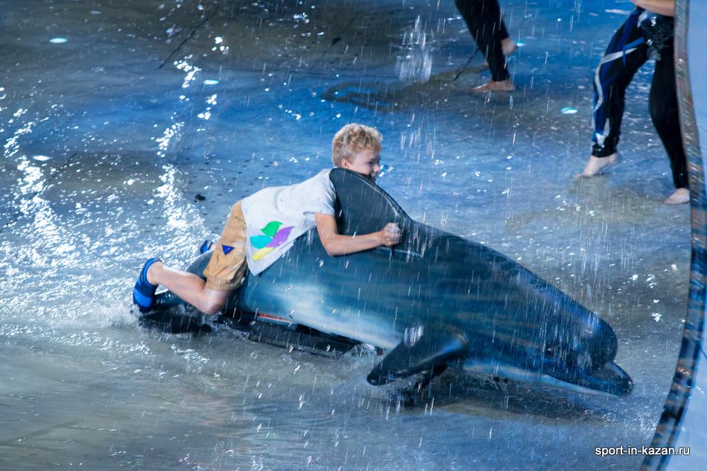 Мальчик катается на дельфине